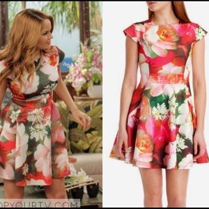 Ted Baker London Roziey Rose on Canvas Dress